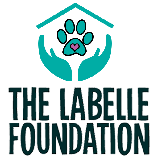 The Labelle Foundation